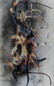 Paul Duval artiste Sherbrooke Estrie. titre cosmos organique dessin à base de poudre de photocopieur.